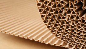 Sản xuất carton gợn sóng