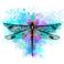 Ảnh hồ sơ của Dragonfly